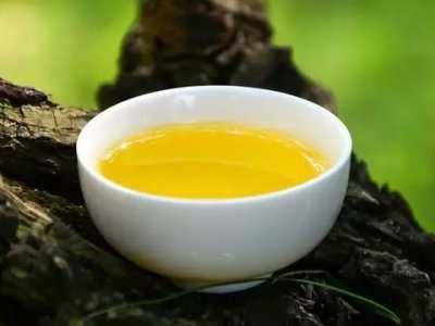 山茶油的功效 山茶?#32479;?#20102;能吃外还有这些功效