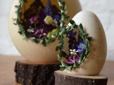 鸡蛋壳手工 蛋壳植物小饰品DIY制作教程图解